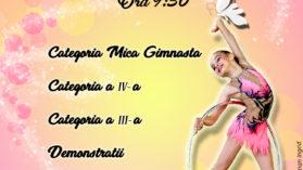 Cupa Pro Aktiv 2017 Editia III-a