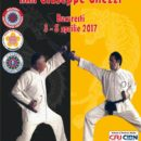 Seminar Kung Fu Shaolin, Tai Chi, Arme, Qigong