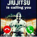 Antrenamente Jiu-Jitsu/Grappling