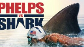 VIDEO INCREDIBIL! Michael Phelps s-a intrecut cu un rechin in apa. Cine a castigat cursa de 100 de metri